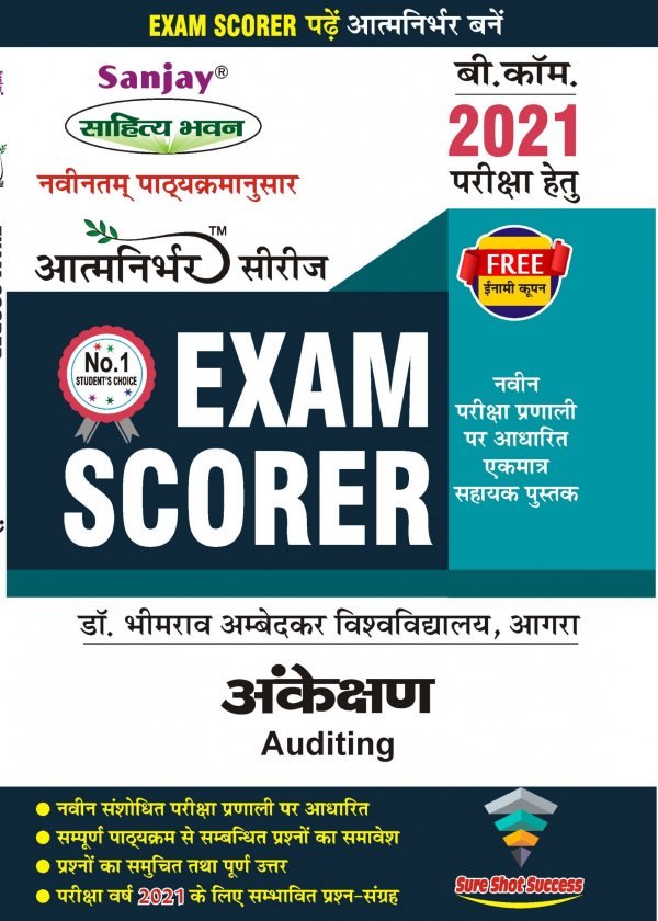 Auditing Scorer Hindi